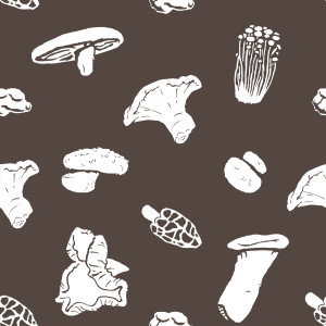 (2013) Pattern for a Spoonflower fabric
